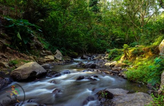 Aliran salah satu sungai di Hutan Juanda