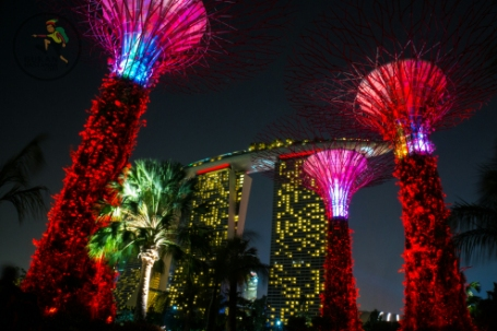 singapore-at-night-111111-1-of-1_wm1