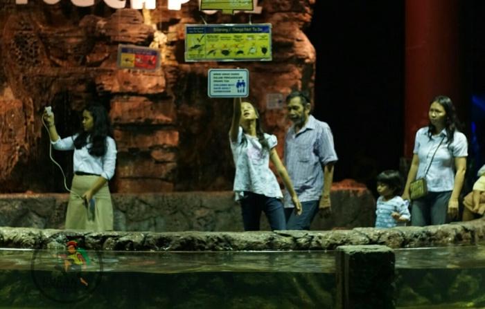 Pengunjung seawrold