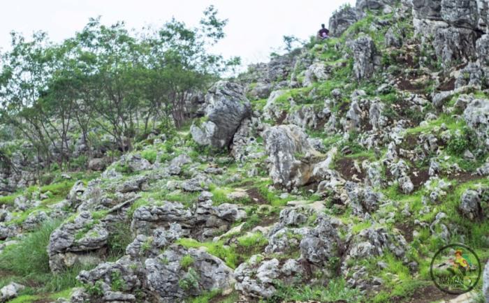bukit harapan 1 (1 of 1)-3